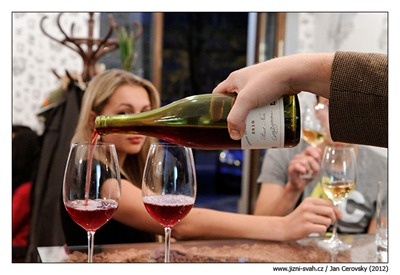 bussiere_pinot_2010