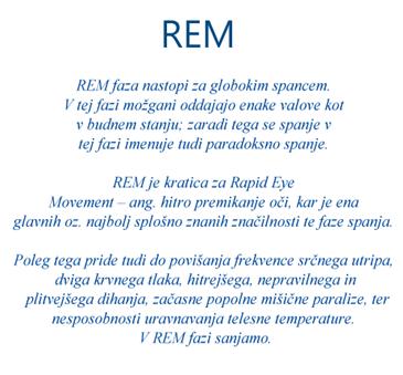 Rem_thumb3