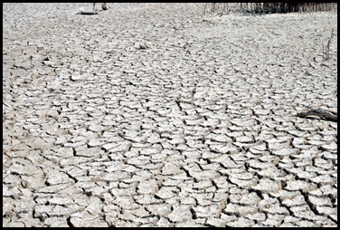 14c - parched earth