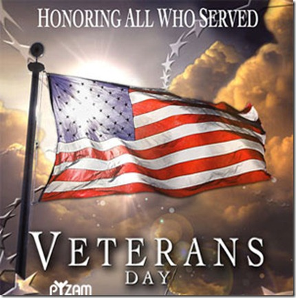 veterans-day-cool-flag1