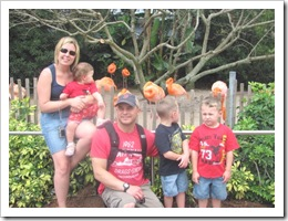 Florida vacation Sea World Trish Ronnie kids near flamingos