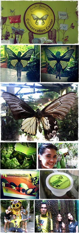 butterfly conservation center