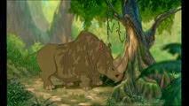 10 le rhinocéros