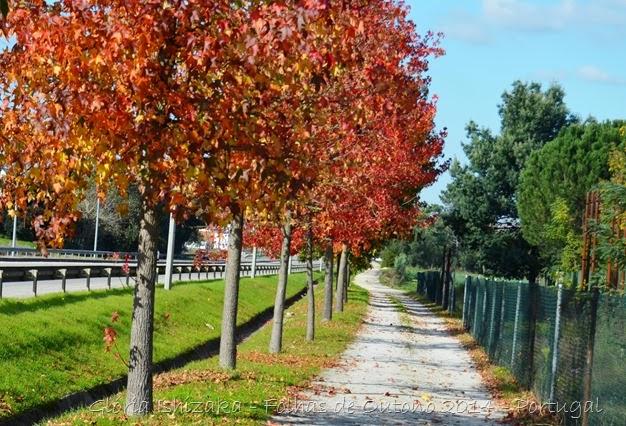 Glória Ishizaka - Folhas de Outono 8