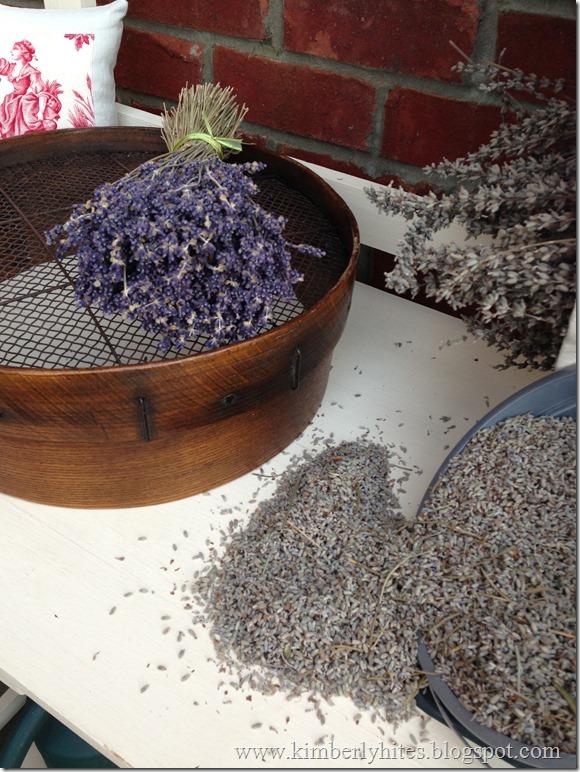 lavender_harvest (14)