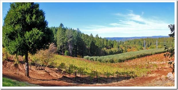121103_AppleHill_pano