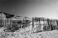 Sand-Dune-Fencing-10