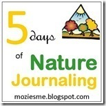 naturejournaling_thumb1_thumb2_thumb