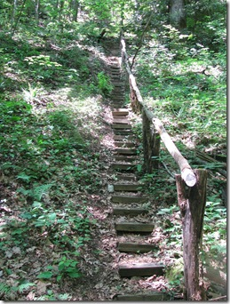 Laurel Valley stairs