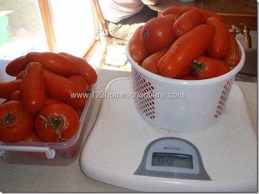 Garden Fresh Marzano Tomatoes