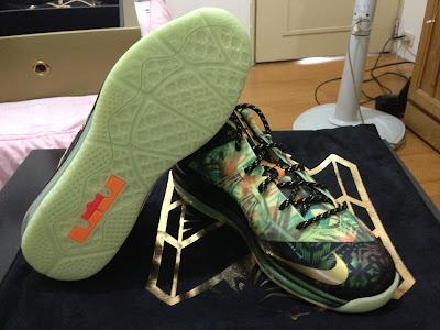nike lebron 10 ps elite championship pack 9 16 Nike LeBron X – Celebration Pack – Special Packaging