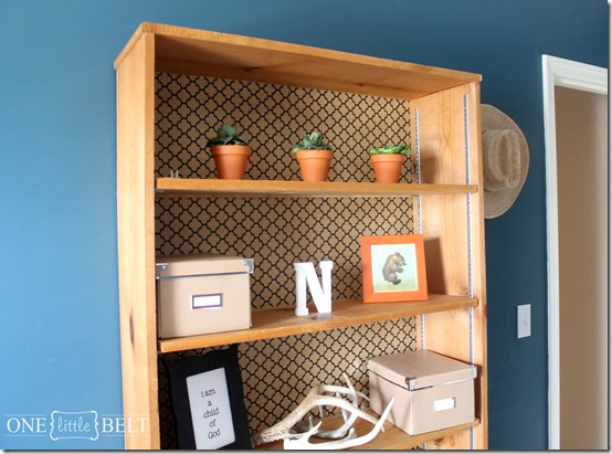 wallpaper-backed-bookcase3