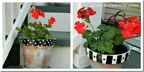 black_white_painted_pots_red_geraniums_collage