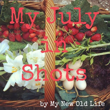 my july in shots