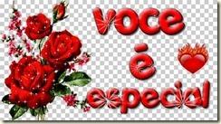 voce-e-especial73