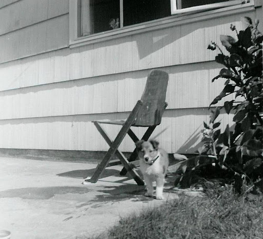 sl 1958