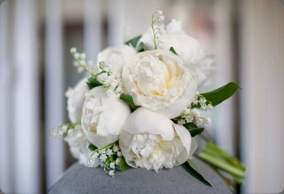 264906_10150211787405957_2533195_n flora bella