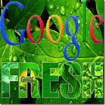 Google Fresh