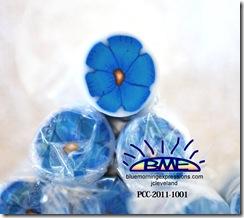 PCC-2011-1001