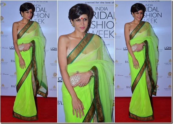 Mandira_Bedi_Green_Net_Saree