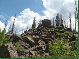 Alpine Pond 046