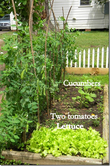 labeled garden 4