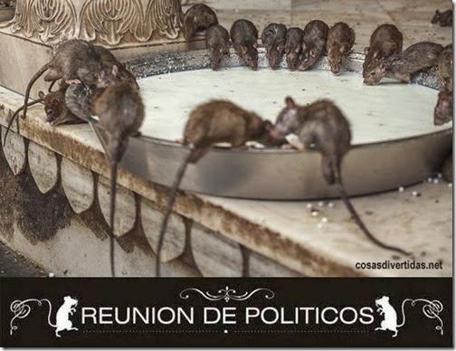 Reunión anual de políticos 1