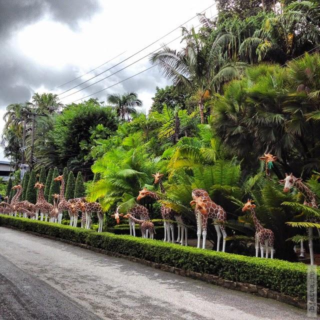 2012. Nong Nooch. Thailand. Pattaya. Естественно это статуйки.