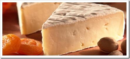 queijo-brie3-600x250