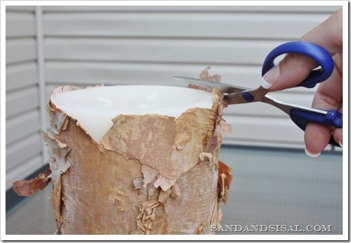 Trim excess bark (800x533)