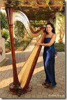harp 豎琴