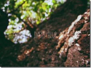 blurry days