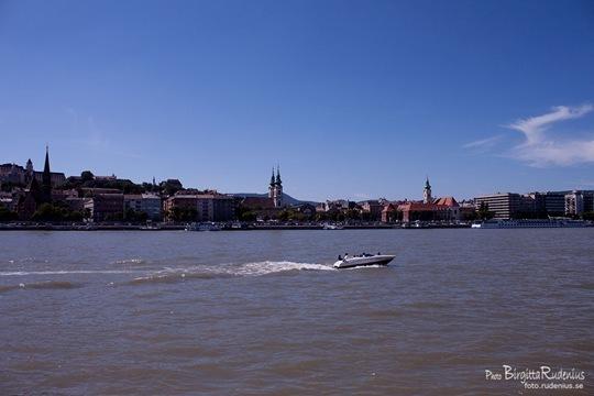 donau_20110811_speedy
