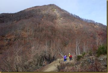 Monte Pollaio