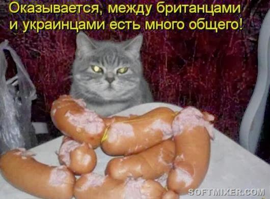 ebbaf11d32bf8543d9b4c72dbfe_prev
