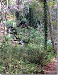 Seminole Falls at Headsprings Park