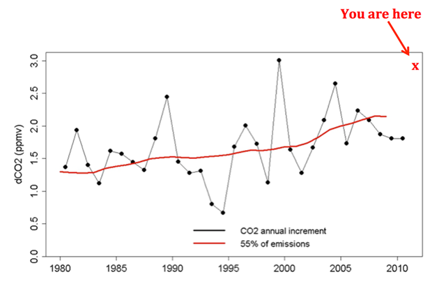 Annual change in atmospheric carbon dioxide (CO2) concentration, 1980-2013. The red curve shows the airborne fraction of CO2. Our best estimate is that roughly 55 percent of emitted carbon is 'airborne', and roughly 45 percent has been sequestered by natural sinks, mainly the ocean and the terrestrial biosphere. Graphic: Michael Mann