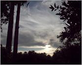 Clouds1170_SchulerW11