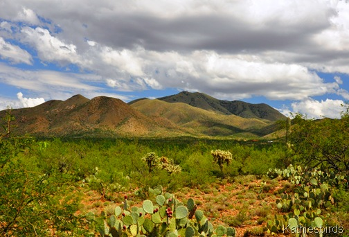 2. Mt. Fagan-kab