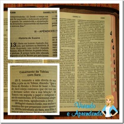 Bíblia Sagrada2