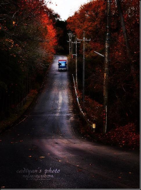 秋の終焉_02