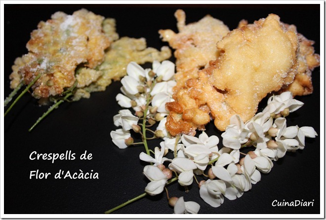 6-5-crespells de flor d acacia-ppal-ETI