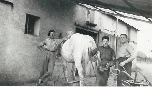Le forgeron-marchal ferrant Marcel Hubert au travail dans les annes 1960