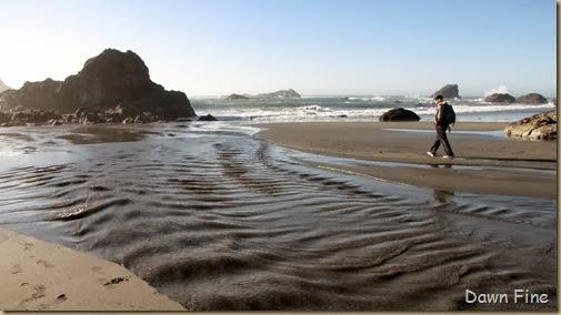 Harris Beach_070