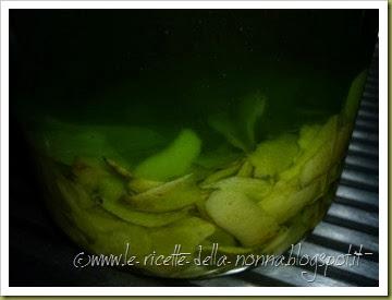 Limoncino con limone verdello di Sicilia (6)