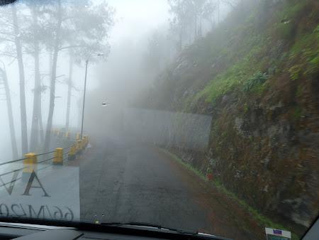 Sosele Madeira