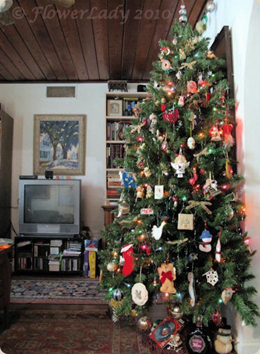 12-12-tree