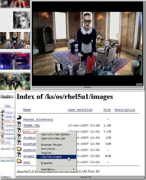 Thumbnail Zoom Plus zoom delle miniature e dei link immagine