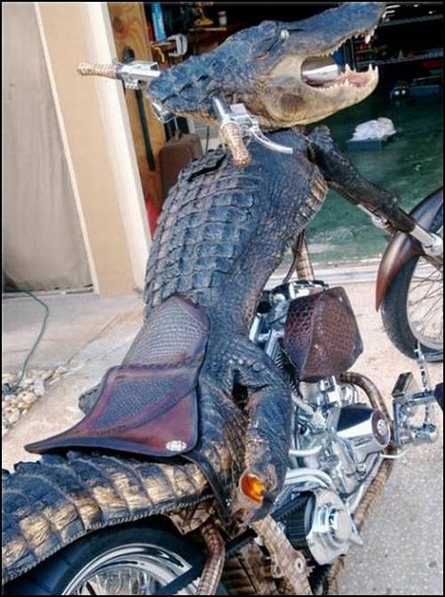 Alligator-Bike-croc_bike_05