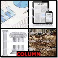 COLUMN- 4 Pics 1 Word Answers 3 Letters
